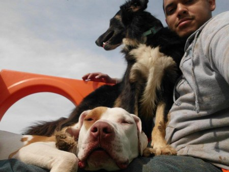 Image of Pawderosa Ranch Doggie Play and Stay - Northeast San Antonio which provides dog boarding in or near Schertz, TX